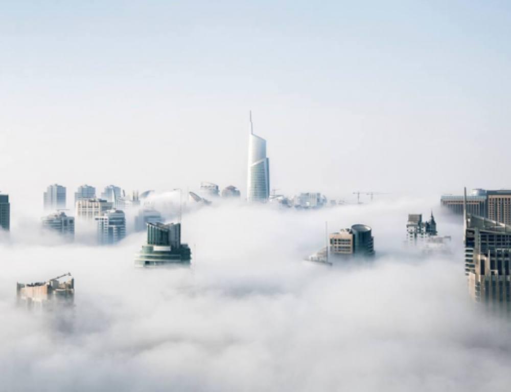 Unternehmensdatenbanken – das digitale Kapital